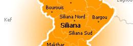 siliana-19102012