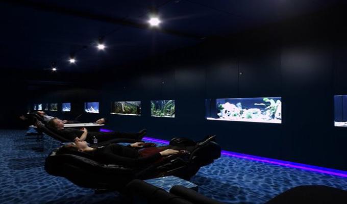 ces entreprise qui vous feront r ver d 39 y travailler images directinfo. Black Bedroom Furniture Sets. Home Design Ideas