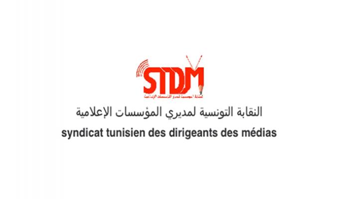 stdm-di