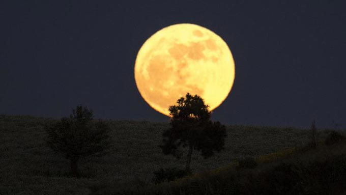 super-lune-birman-2016